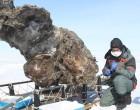 ¿Es posible crear un mamut a partir de restos orgánicos encontrados en el hielo siberiano?