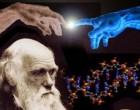 Más sobre la teoría de la evolución