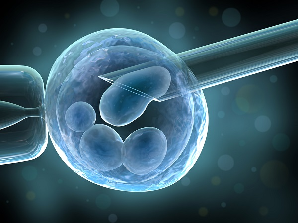 Preimplantation genetic diagnosis and IVF. Recent study shows that selecting the best quality embryos for transfer not improves IVF effectiveness