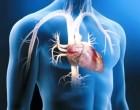 Células madre para infartos. Nueva técnica desarrollada en España