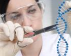 El ecosistema y las nuevas técnicas para modificar el genoma humano y animal