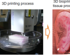 Organos humanos producidos por tecnología 3D