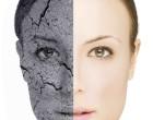 Reciente trabajo abre la puerta para la producción de piel funcionalmente activa