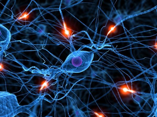 La utilidad clinica de las células madre según los datos más recientes es que la posibilidad de obtener resultados clínicos positivos está distante