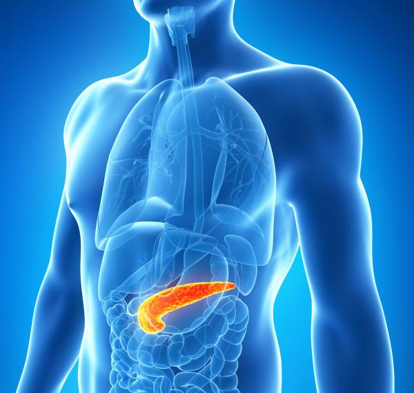 Las células iPS así producidas utilizándolas conjuntamente con un tratamiento farmacológico, puede ser usadas en el tratamiento de los pacientes diabéticos
