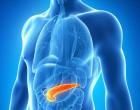 ¿Se pude curar la diabetes? Se ha logrado producir células pancreáticas a partir de células iPS