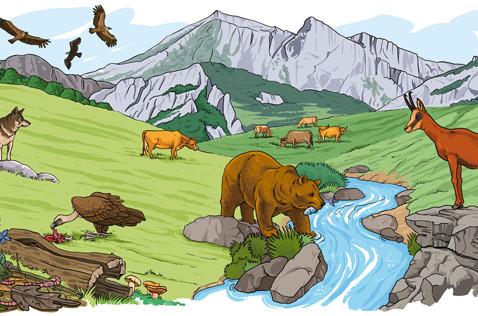 ecosistema-cantabrico