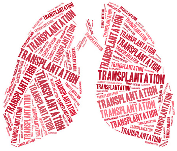 El desequilibrio entre órganos disponibles y su demanda sigue creciendo. Las donaciónes de órganos insuficientes prevalecen a nivel mundial.