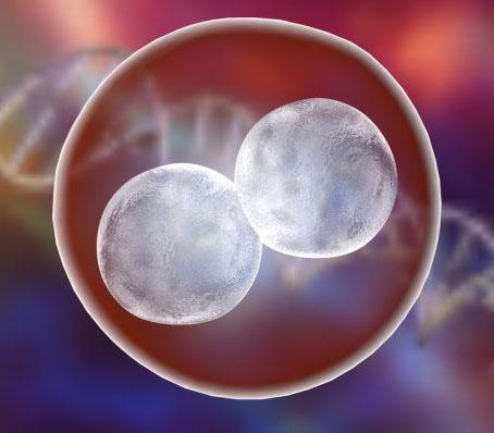 Ensayo clínico CRISPR en humanos. Consiste en inhabilitar el gen que codifica la proteína para que no ataque al propio organismo modificando así las células.