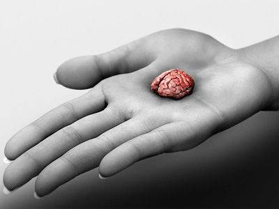 Artificially produce mini brains new attempt