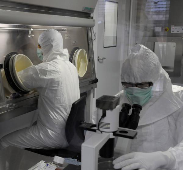 Terapia génica celular, se legaliza por primera vez en Europa para tratar una enfermedad hematológica que debilita las defensas inmunológicas.