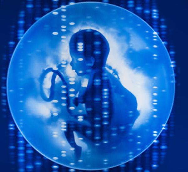 Edición genética germinal. Según un informe de Estados Unidos, los ensayos clínicos podrían ser permitidos un día para condiciones graves.
