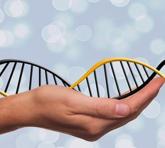 La primera clínica de transferencia mitocondrial abre sus puertas