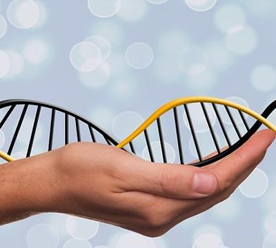 Transferencia mitocondrial. Abre las puertas la primera clínica Darwin Life que ofrece estas técnicas de la mano de John Zhang