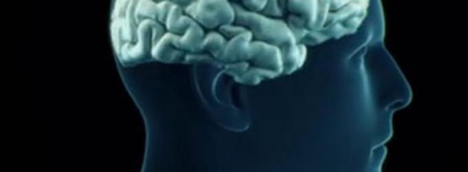 Se establece una correlación entre ciertas alteraciones en el cerebro y el consumo de pornografía
