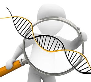 """Genetismo es la tendencia social que permite la eliminación de seres humanos genéticamente diferentes, defectuosos o """"inferiores."""