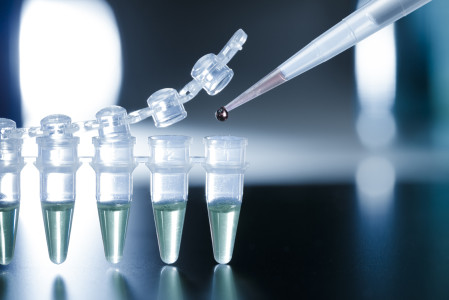 Investigación con células madre embrionarias