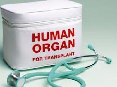 Aspectos éticos del trasplante de útero entre personas vivas