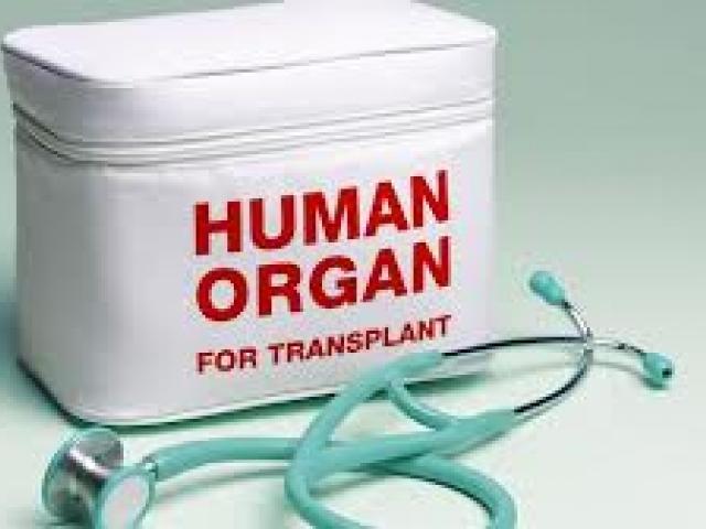 Enfermos de sida y trasplante de órganos