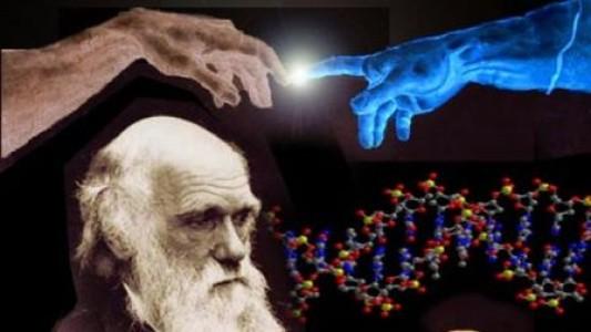 Terminología relacionada con la teoría de la evolución