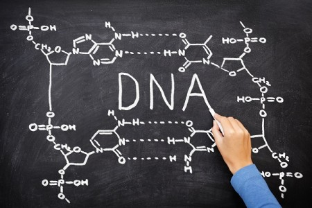 Los pseudogenes mucho más que reliquias de ADN