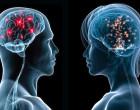 Dimorfismo sexual humano. ¿Hombres y mujeres tienen también diferentes estructuras y conectividades cerebrales?