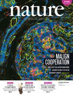Se estudia bondad científica de nueva técnica para reprogramar células adultas en similares a las embrionarias