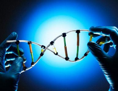Un paso más en el campo de la biología sintética