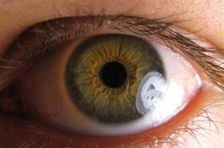Células iPs para regenerar tejido retiniano
