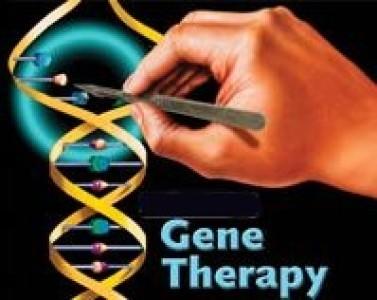 Terapia genica combinada con terapia celular