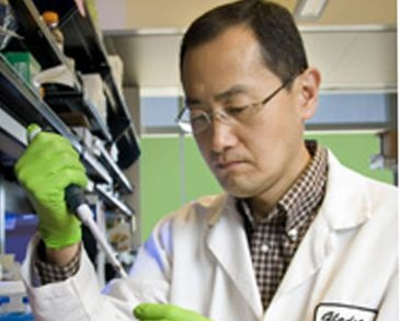 La reprogramacion celular presetna mejores resultados clínicos sin tener que elimianr un embrión