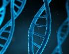 Máster de Bioética. Trabajos más destacados
