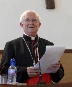 Ley del aborto y minirreforma del PP, Cardenal Cañizares