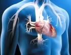 Se suspenden los ensayos con terapia génica para cardiopatías graves