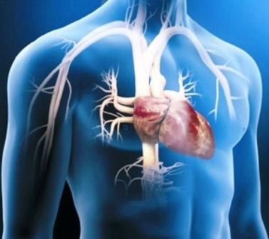Terapia génica para cardiopatías graves, se suspenden ensayos pero los investigadores afirman que sirvió para proponer otros ensayos