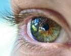 Células madre embrionarias, su uso para tratar enfermedades oculares se sigue sobrevalorando