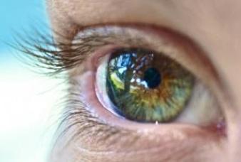 Tratamiento con células madre embrionarias para de enfermedades oculares están siendo sobrevaloradas