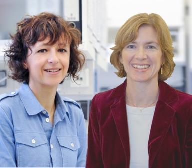 Edición genómica se otorga el Premio Princesa de Asturias 2015 a desarrolladoras de esta innovadora técnica