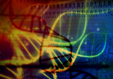 Ecosistema. La modificación del genoma humano y animal, existe el peligro de que este cambio en una especie se difunda incontroladamente en el ecosistema