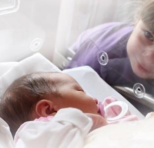 Donación de óvulos. Un tercio de los niños nacidos por reproducción asistida
