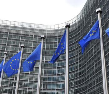 Maternidad subrogada. El Consejo de Europa rechaza proyecto para permitirla