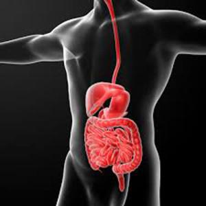 Crohn, esperanza de cura de fístulas con el uso de células madre
