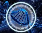 Denominación CRISPR, ¿A quién corresponde su autoría?