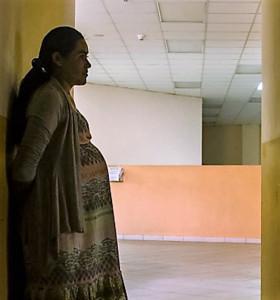 Zika. Una ONG promueve el envío de píldoras abortivas a embarazadas infectadas