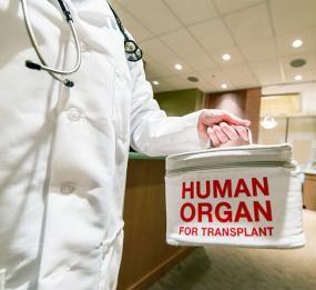 La regulación de la donación y traplante de órganos fundamental tanto para el receptor que puede salvar su vida como para la seguridad del donante
