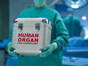 www.medicaltourismmag.com