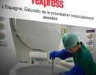 España, primer destino del turismo reproductivo con 16.000 niños nacidos por año