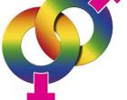 ¿Cuántos transexuales existen?