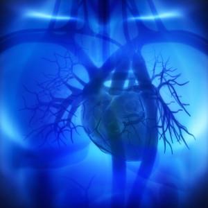 Resultados de los ensayos clíncos en cardiopatías con células madre adultas