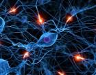 ¿Cuál es la utilidad clínica actual de la terapia celular?